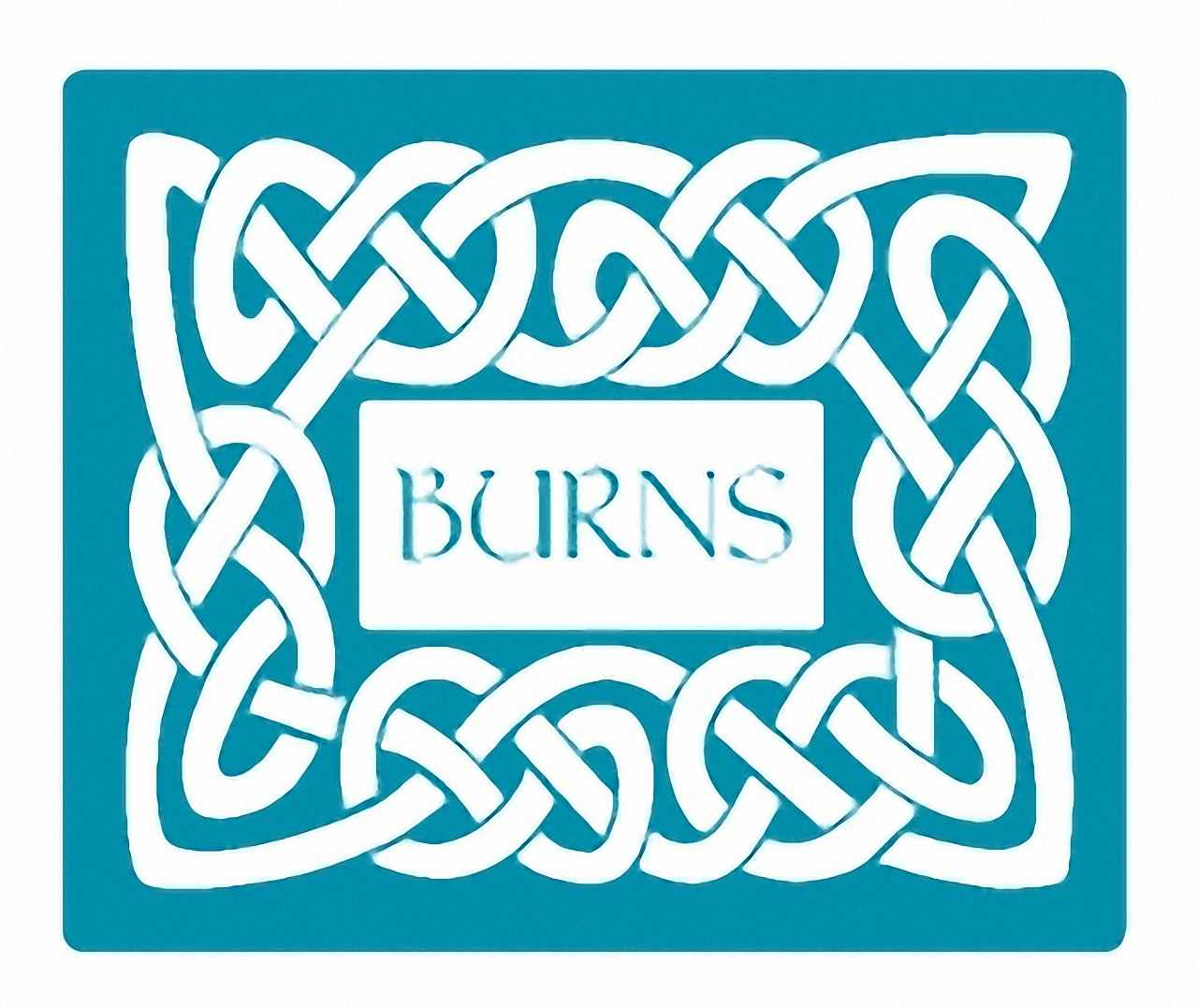 Burns Pet Foods logo
